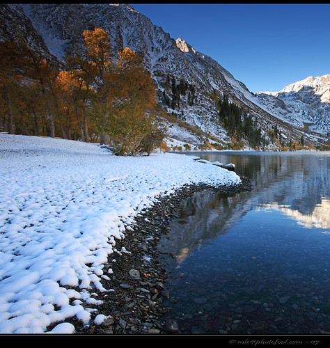 easternsierra foliage snow convictlake california photofool