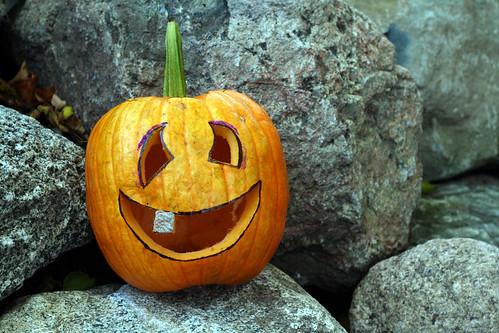 pumpkin-18.jpg