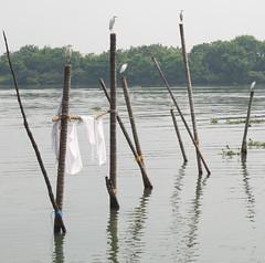 IMG_3973 Cochin, Kerala, India. (HAKANU) Tags: sea india water boats fishing fishermen harbour kerala cochin kochi arabiansea