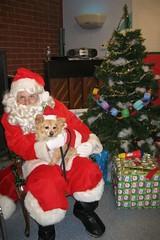 Santa & Rusty