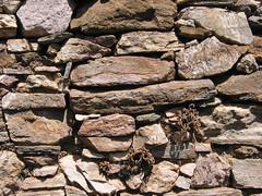 Stenvg (Hans Erik S.) Tags: wall sten samos