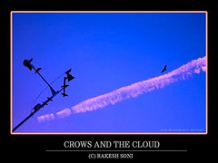 Crows and the cloud (rakesh_s(introspecting)) Tags: city blue sky cloud india history childhood bike yoga club children photography waterfall blog pond education energy artistic pics indian sony joy images historic cricket bombay lions canon350d historical portal abstraction mp crow abstracts indore chemtrail mumbai society atomic checkout soni colony rajesh rakesh mandu flickrsbest anushaktinagar abigfave platinumphoto aplusphoto katni colourartaward rakeshsoni rakeshsony chemboor