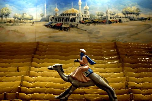 A lone camel crosses the desert.