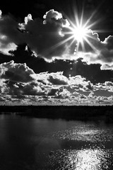 (willy gil) Tags: bw sun miami flare 30d 1755f28is