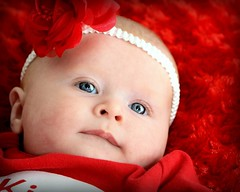 Baby Photography (CartersMommie) Tags: red baby eye rose photography eyes day kisses valentine pop valentines eyepop araquem