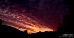 Atardecer en Casa (TRUZYNA PHOTOGRAPHY) Tags: sunset red sky paisajes rot colors clouds landscape atardecer casa rojo tramonto nuvole sonnenuntergang himmel wolken cu patio cielo nubes nuvens dmmerung bulutlar quillota tarde skyer crepsculo crepuscolo moln   mraky  oblaci   ret