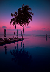 Infinity (maapu) Tags: travel pink blue light vacation holiday reflection tourism beach canon lost island asia tour coconut dusk infinity low hilton palm resort swimmingpool palmtree maldives conrad infinitypool themoulinrouge lowlightphotography rangali saarc maapu mauroof canon40d mauroofkhaleel