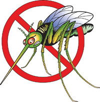 Just Say NO To Mosquitoes
