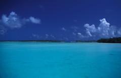 Polynésie - Huahine (laurentp_ap) Tags: sunset coconut lagoon huahine borabora cocotiers iles vanille frenchpolynesia lagon vahine polynésiefrançaise vahiné polynésiefr laurentphilippe agitationpassagère