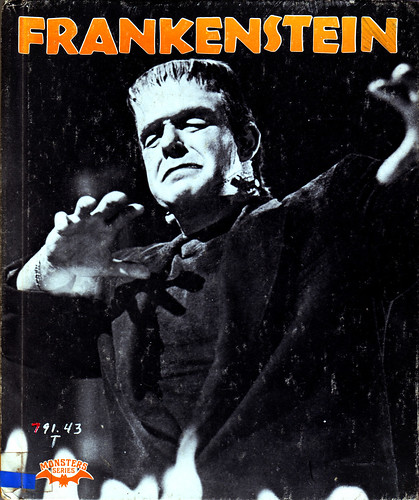 An in depth look at frankenstein