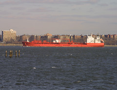 BOW CARDINAL in New York, USA. Feb, 2005 (Tom Turner - SeaTeamImages / AirTeamImages) Tags: nyc red newyork brooklyn port bay harbor marine ship cardinal harbour transport pony maritime bow transportation bigapple tanker chemical tomturner odfjell seachem odfjellseachem 9114244 bowcardinal