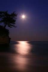 Moonlight (cormorant point) (Spice  Trying to Catch Up!) Tags: camera longexposure blue trees sea fab sky moon color colour beach nature water beautiful japan canon reflections dark geotagged photography eos photo seaside amazing interesting asia flickr image creative picture vivid explore photographs photograph  moonlight portfolio dslr    hitachi gettyimages  onde  larawan      twitter colorpicture creativeimages ibarakiken  explore409 mywinners digitalx  anawesomeshot impressedbeauty frhwofavs ishihama ysplix excellentphotographerawards     theperfectphotographer