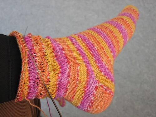 socksBellatrix