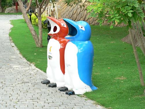 Vinpearl Island Penguins