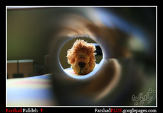 Lion King (FarshadPix) Tags: new test macro persian king gallery signature lion vision confused noedit strong trick nophotoshop visual tunel ایران powerful عکسهایی farshad shir 70mm تهران عکس عروسک شاه noeffect انعکاس canon30d تونل فرشاد sigma1770 picasaweb سایه شیر گیج palideh امضا پالیده