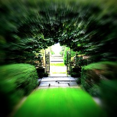 Toward the bright white light. (Pandorea...) Tags: green stone garden gate arch wroughtiron formal symmetry paving whitelight edging personalbest bicul ourmasterpieces