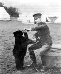 Winnie the bear