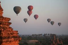 balloons pagodas and palms (PawL23) Tags: myanmar bagan balloonsoverbagan basket balloons hotairballoon sunrise burma aasia unseenasia 100v10f earthasia