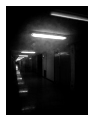neonecho (seba0815) Tags: ricohgrdiv grdiv monochrome neon echo neonecho neonlights hallway light shadow doors building glass view walk center mood closed empty emotions deserted urban city mallorca island bw black white blanco nero blanc noir schwarzweis blackwhite blackandwhite seba0815 dark darkphotography