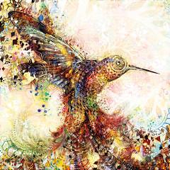 Hummingbird of Paradise (Natural Warp) Tags: psychedelicart psytrance art virtualreality visionary visionaryart naturalwarp love shamanism spirituality highenergy fourthdimension fifthelement thirdeye dmt ra sun vibration hummingbird colibri ayhuasca paradise natural warp psychedelic