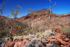 mount painter from the ridgetop track adjacent to mount gee - link to the 'save arkaroola sanctuary' pool on flickr