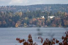 The view of Lake Washington from Viretta Park, Seattle (phlyersphan) Tags: seattle cobain nirvana lakewashington kurtcobain virettapark