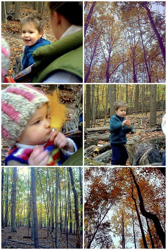 A little late-afternoon fall hike in Valley Forge NP