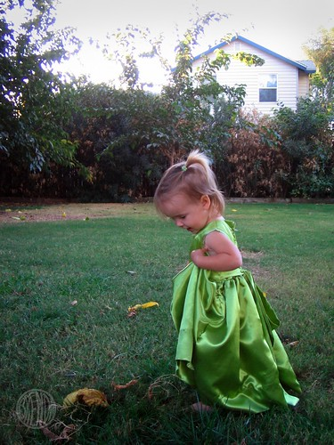 Princess Tinkerella