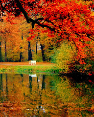 Missing Autumn (Mnica (Monguinhas)) Tags: autumn nature colors germany cores deutschland warm natureza herbst natur outono alemanha farben schwetzingen quentes abigfave cmeradeourobrasil anawesomeshot impressedbeauty 100commentgroup