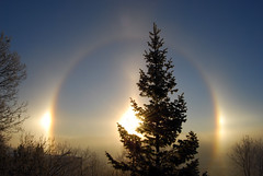 Hello Halo (Hallo Halo) (sta) Tags: winter sky sun mist reflection tree sol weather norway norge vinter bue himmel halo bow tre sundog tke phenomenon fenomen vr bisol frostbow frostbue notarainbowbut moilanenarc msh1210 msh121013