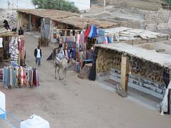 Egypt Xmas 2007 327