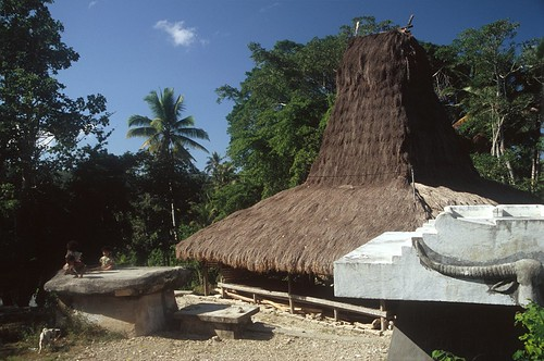 Sumba (Indonesia) - Traditional village 3