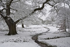 Winter in April 3 (Aitch B) Tags: winter white snow cold nature weather landscape fourseasons potofgold