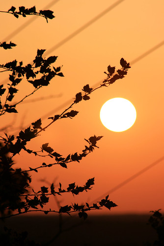 Sunset 5/11