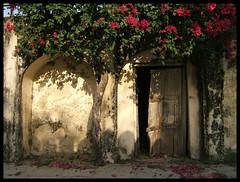 Qutb Shahi Tombs (frog lolly) Tags: india hyderabad andhra pradesh