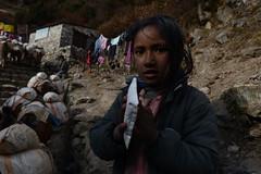 Children of Nepal (dscheronimo) Tags: gokyo nepal himalaya children kinder mädchen trekking namchebazar nikon d800