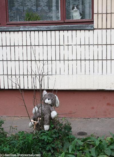 minsk_teddybear