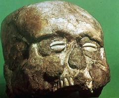 Jerichoskullshell