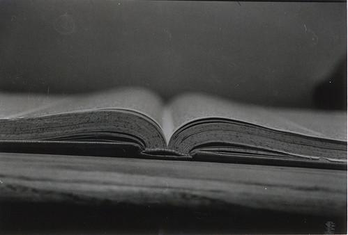 dannie, book