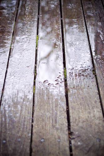 rainyday3 copy