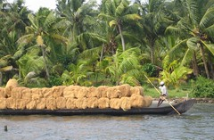 Kerala Backwaters (rofair) Tags: india kerala earthasia