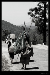Returning Home (febinjoy) Tags: road people workers fdsflickrtoys fuji photographer photos top kerala return finepix 20 simple unlimited flickrmeet nationalgeographic stockshot smrgsbord teaestate valparai febin creativephoto kfm beautifulcapture fujifinepixs6500 fujifinepixs6500fd ithinkthisisart anythingdigital obsessivephotography malayalikkoottam keralaflickrmeet febinjoy unlimitedphotos fujifinepixs6500fds6000 kfm3 valpparai malayalikkottamkfm3
