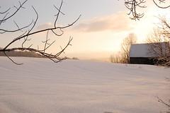 2/14/08 (Bliss County) Tags: winter snow barn sunrise vermont corinth