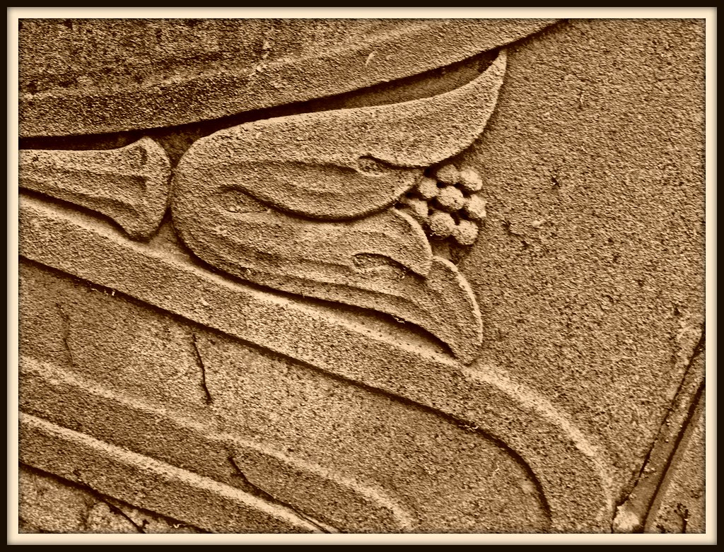 Tulip in Stone