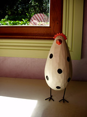 A little spotted chook