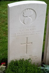 T.C. Ward, London Regiment, 1916, War Grave, Lijssenthoek (PaulHP) Tags: ww1 world war one frst headstone marker grave military cemetery cwgc belgium camden road tc thomas charles ward private service number 8123 28th december 1916 7th bn battalion london regt regiment lijssenthoek ellen elizabeth 38 rochester kentish town