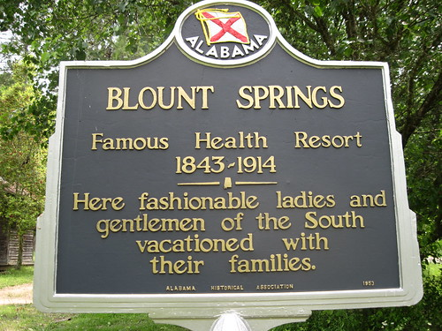 Blount Springs, Alabama Historical Marker by fables98