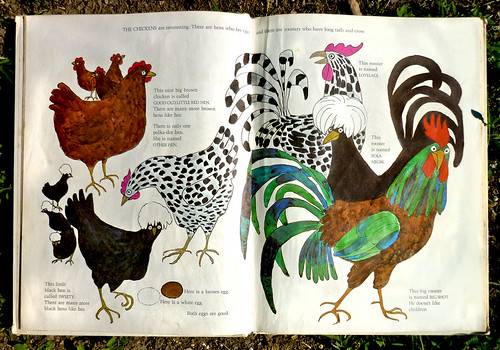OUR ANIMAL FRIENDS ATY MAPLE FARM