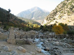 A bridge, towards Romboor,Chitral (imranthetrekker , new year new adventures) Tags: pakistan snow afghanistan mountains history tourism church nature architecture river oak adventure glaciers greenery peshawar suspensionbridge polo nwfp juniper mosques shepherds silkroute chitral khyberpass colorsofautumn hindukush terichmir romboor torkham imranthetrekker imranschah northpakistan kalashvalleys shandoorpass muhabbatkhanmosque nooristan bamborate chitralguy thecastleoffairies trekkinginkalashvalleys shandoorfestival stctahedral kalashpasses donsonpass kundayakpass kalashgilrs