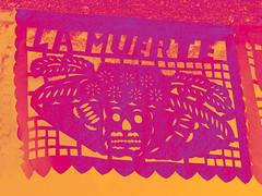 la-muerte-catrina (Clauminara) Tags: mxico mexico mexicocity df universidad autonoma metropolitana ciudaddemexico xochimilco distritofederal uam calaca mejico papelpicado rosamexicano mjico uamx calaveracatrina universidadautnomametropolitanaunidadxochimilco